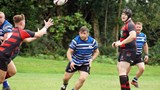 Bream v Bristol Harlequins